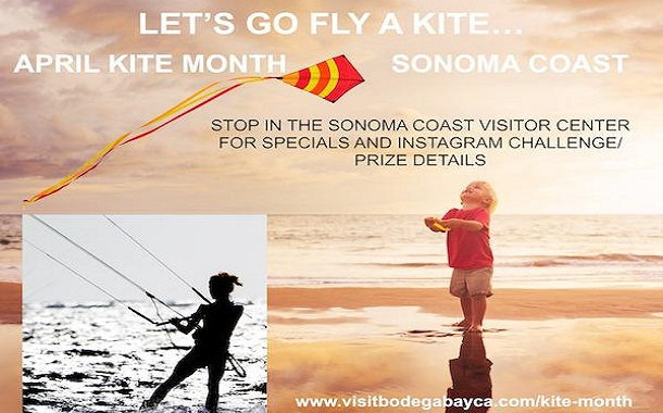 Sonoma Coast Kite Month